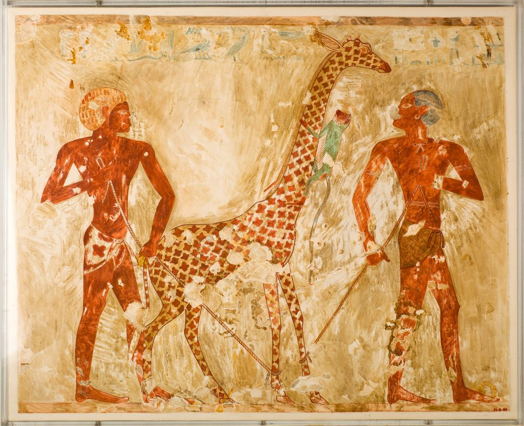 Facsimile by N. de Garis Davies of Nubians presenting a giraffe and monkey in Vizier Rekhmire's tomb (photo: Metropolitan Museum of Art, Acc. No. 31.6.40)