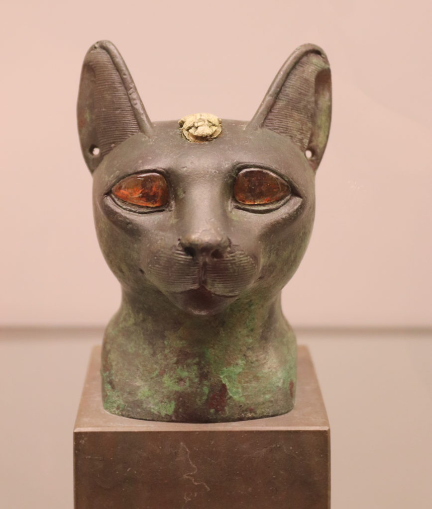 Bronze head of a cat with inlaid eyes and a scarab on its forehead, Late Period (Photo: Katherine Piper)
