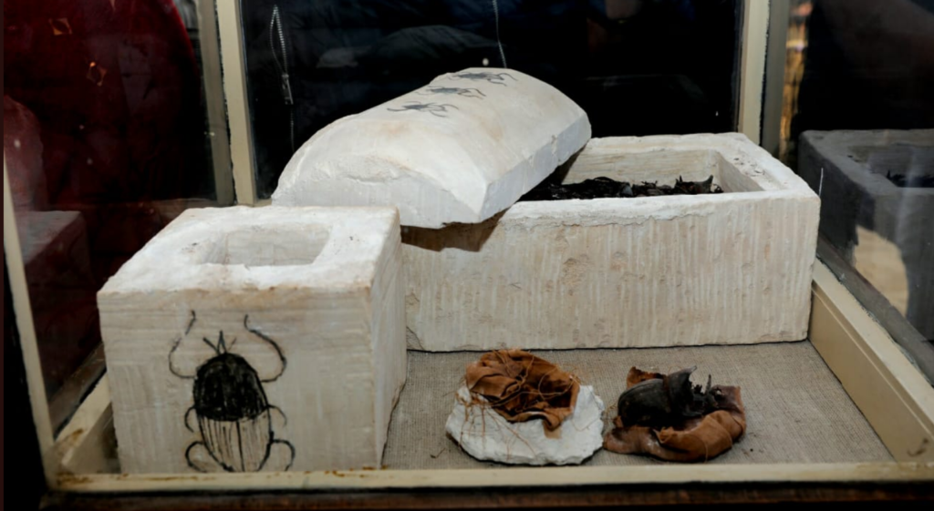 Finding mummified scarab beetles is a rare occurrence (Photo: Ministry of Antiquities)