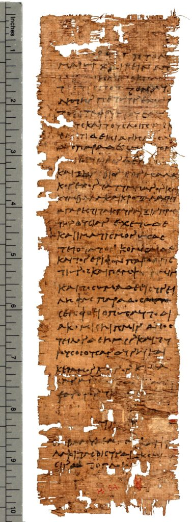 Papyrus Hibeh I                54, verso (Photo: Thomas Fisher Rare Books Library)