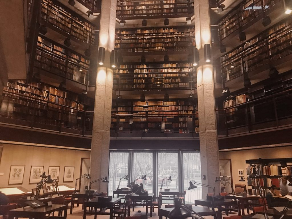 The Thomas Fisher Rare Books Library houses an impressive            collection of rare books and manuscripts, including some            Egyptian papyri (Photo: Nile Scribes)