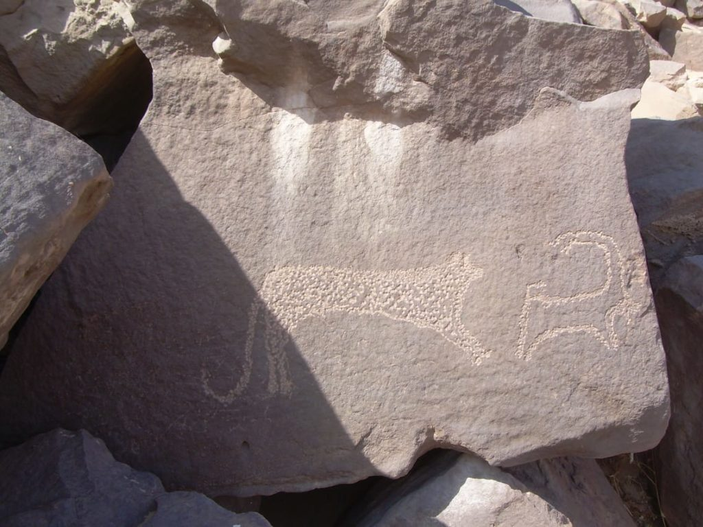 Scenes of animals and other plant life feature                      in the many rock art scenes found near Aswan (Photo:                      Ahram)